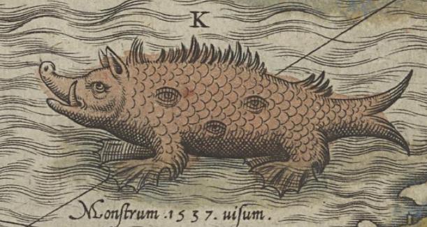 Sea Swine